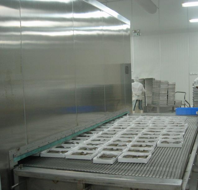 Nagy termelékenységű hálószalag-alagút fagyasztó garnélarákhoz
