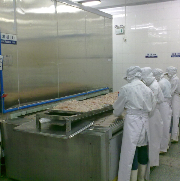 ​Bingshan High efficiency IQF in china fruit Tunnel Freezer/quick machine freezer