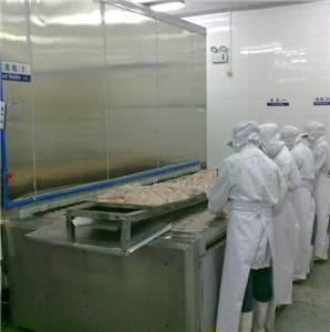 Bingshan High Efficiency IQF en China Fruit Tunnel Freezer / Quick Machine Freezer