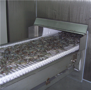 Best selling Spiral Freezer For Fish