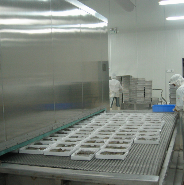 High Productivity Mesh Belt Tunnel Freezer For Shrimp