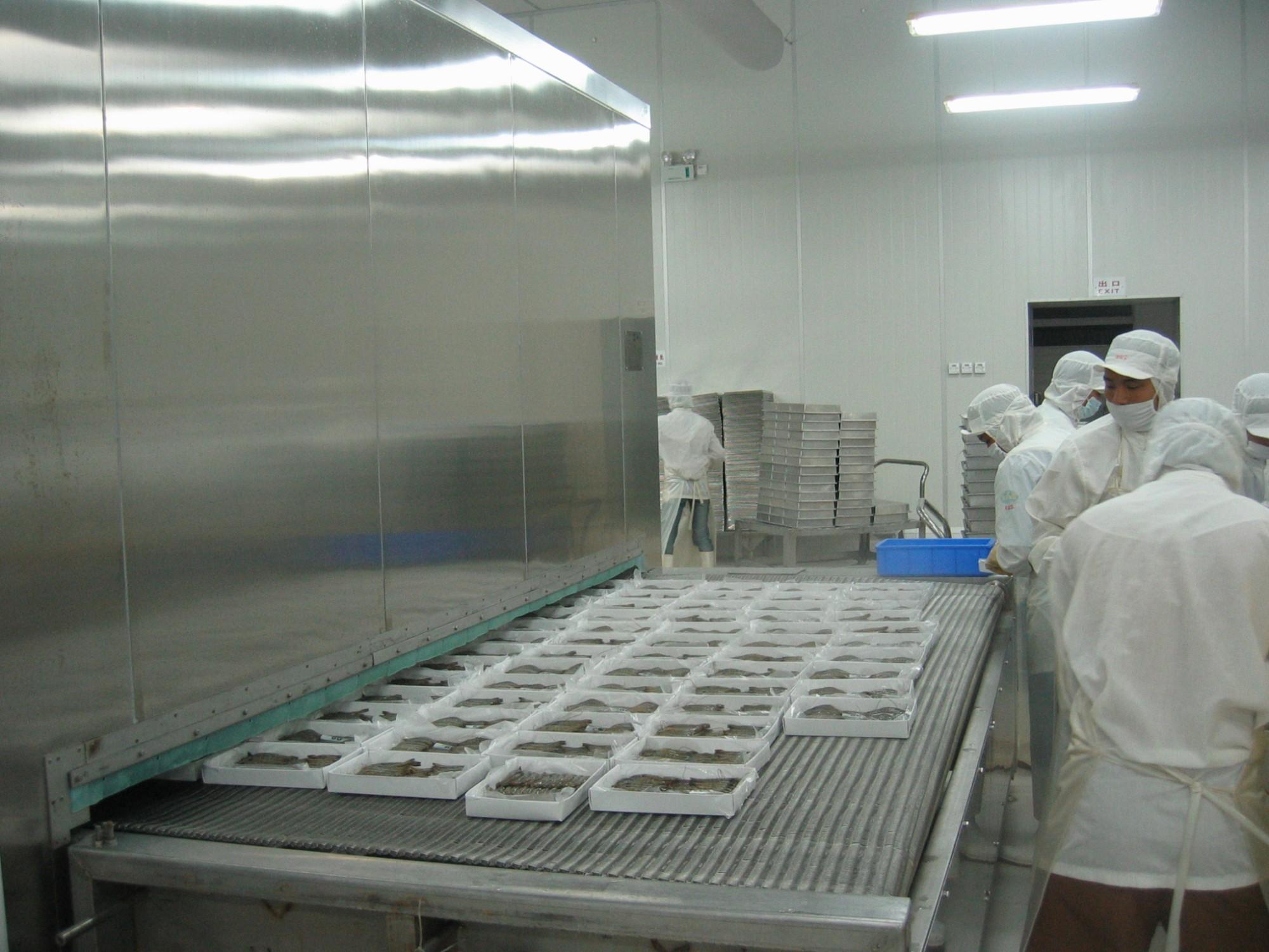 Vásárlás 500-1500kg / h alagút fagyasztó,500-1500kg / h alagút fagyasztó árak,500-1500kg / h alagút fagyasztó Márka,500-1500kg / h alagút fagyasztó Gyártó,500-1500kg / h alagút fagyasztó Idézetek. 500-1500kg / h alagút fagyasztó Társaság,