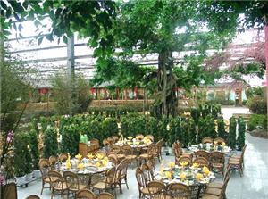 Sunshine Restaurant