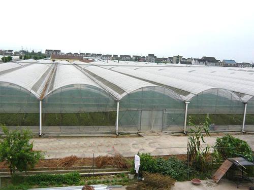Intelligent multi-span greenhouse