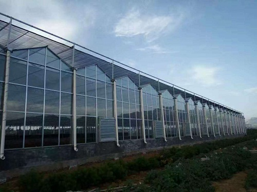 High quality Sunlight greenhouse Quotes,China Sunlight greenhouse Factory,Sunlight greenhouse Purchasing