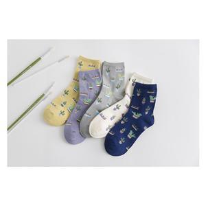 Toptan Monogrammed Kore Versiyonu Küçük Taze Kaktüs Çorap