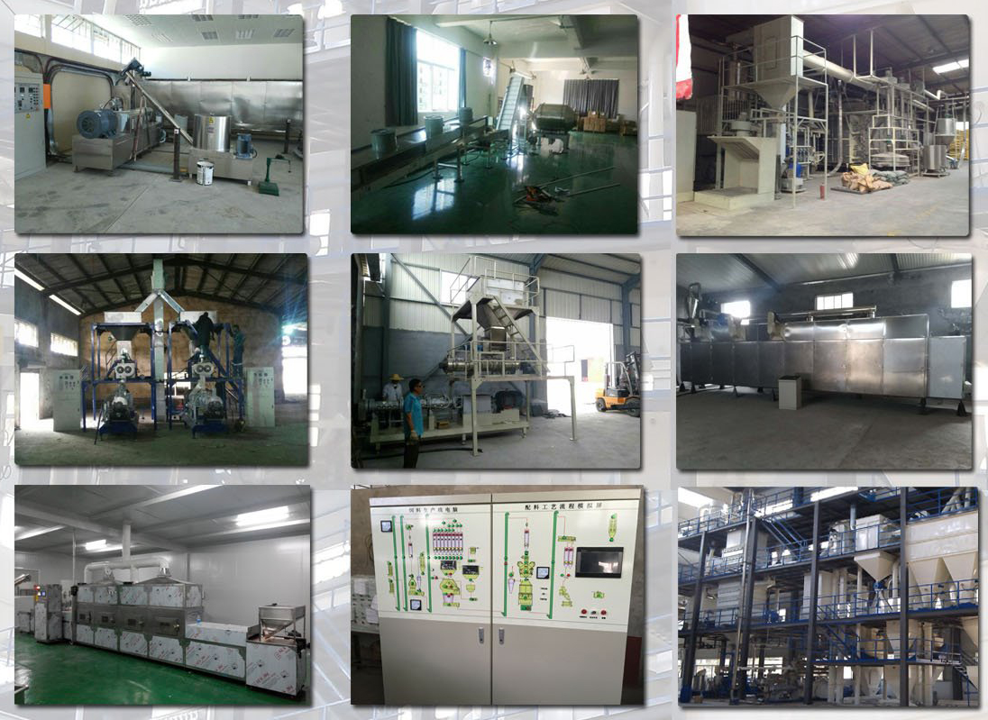 fish feed machine plant