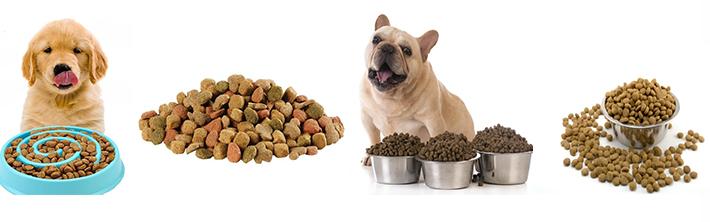 China wet dog food extruder brand