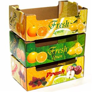 Factory Customized Fruit Packaging box Fruit display box Fruit Tray