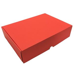 Factory Manufacturer handle lights corrugated packaging box