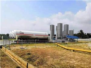 Customized Design LNG Regasification Skid