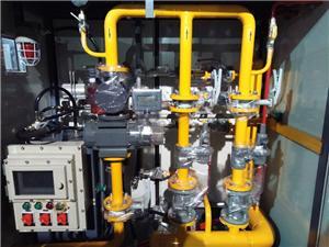 Régulateur de pression 100NM3 / H pour gaz industriel