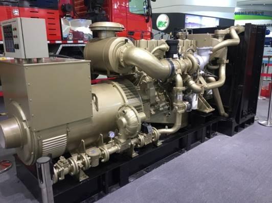 Groupe électrogène au gaz 300kw, 50hz pour gisement de pétrole et centrale électrique