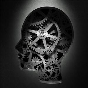 Learn About Gears