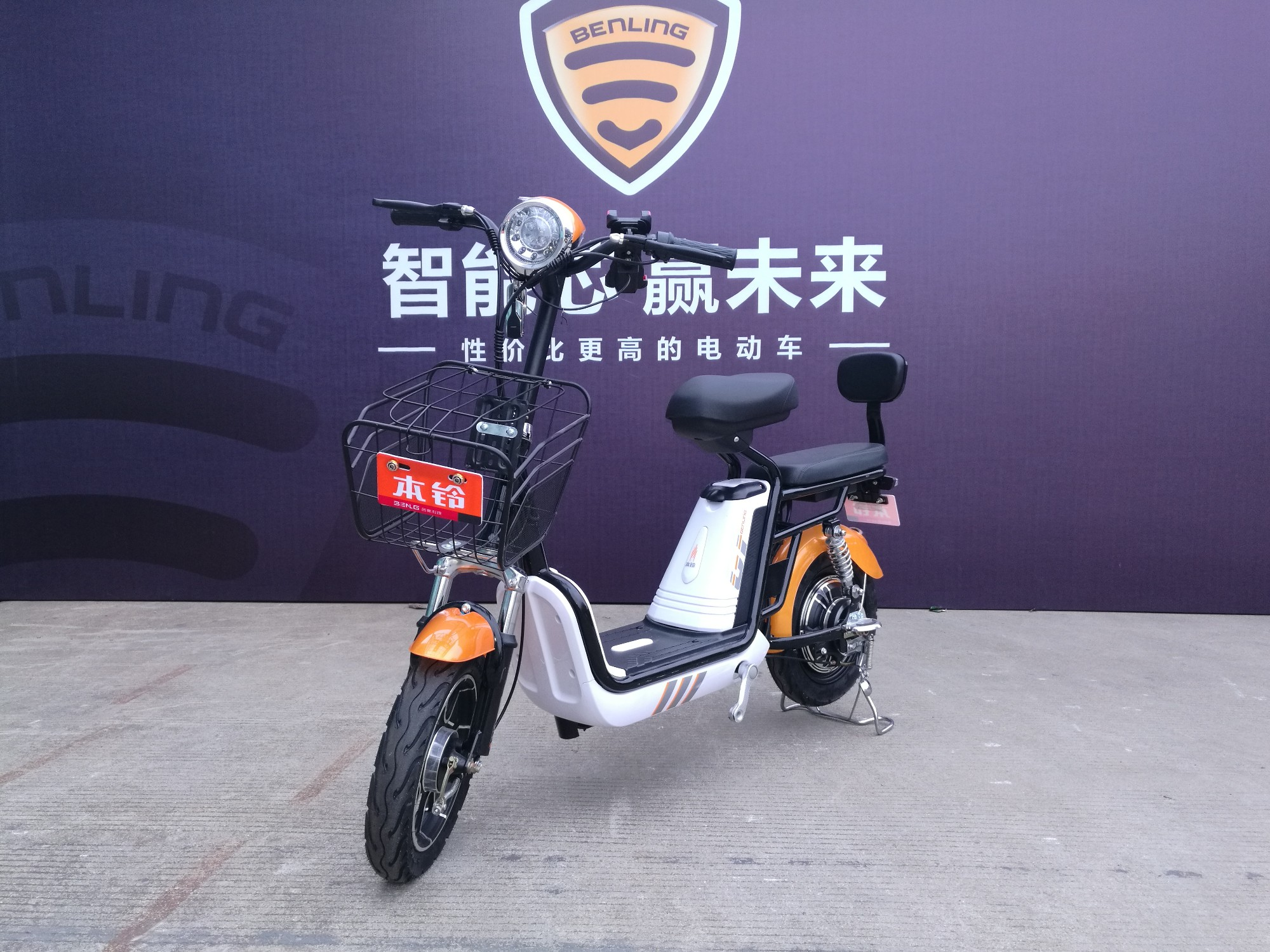Supply 250W Electric Cycle, 250W Electric Cycle Factory Quotes, 250W Electric Cycle Producers