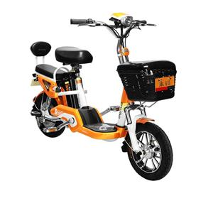 Electric Bicycle With Pedals