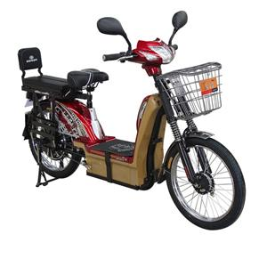 Eco-friendly E-Cycle