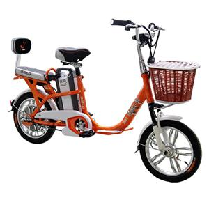 Affordable E-Cycle