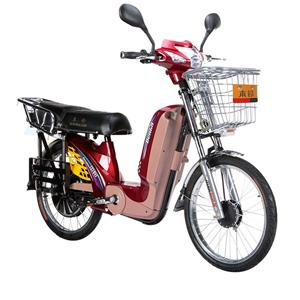BL-RYT Electric Bicycle