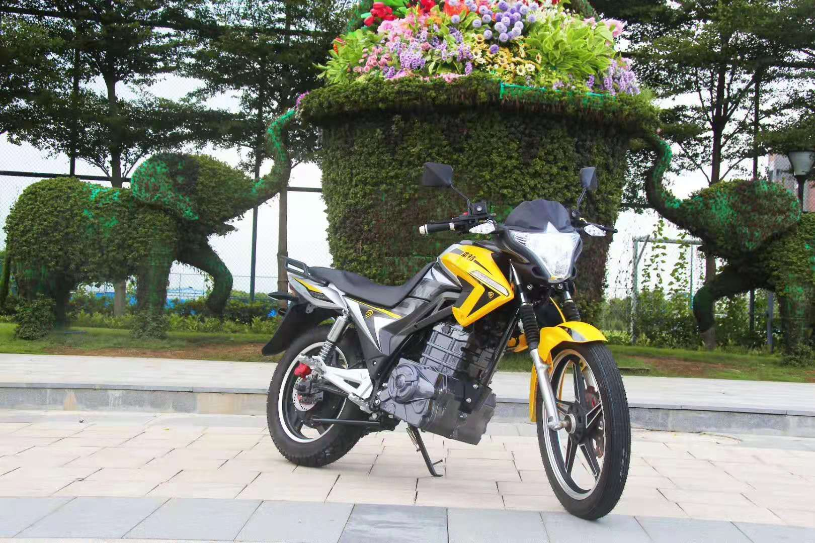 High Power Electric Motorcycle