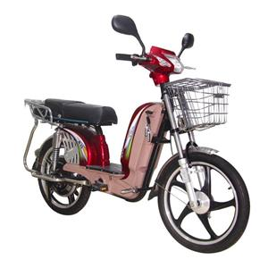 Electric Bicycle with CE