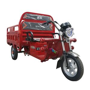 Cargo elektrische driewieler