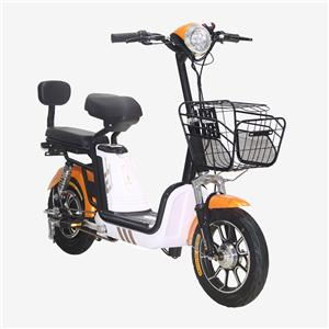 250W Electric Cycle