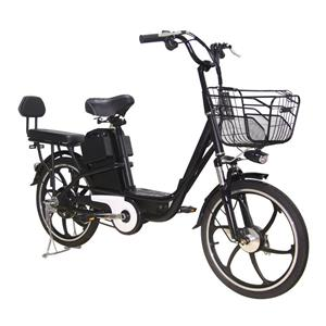 Hot Selling Electric Cycle