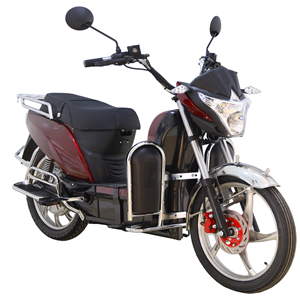 Electric Scooter with Cargo Delivery Capacity