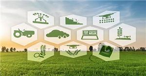 IoT поддержка Wisdom сельскохозяйственные решения ускоряют посадку