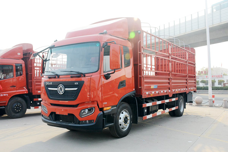 Dongfeng cargo truck chassis