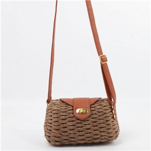Buckle Closure Square Box Rattan Shoulder Bag