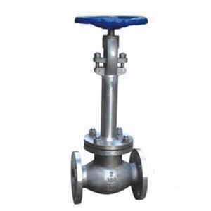 Криогенно удължен клапан за глобус 2 инча ANSI 150