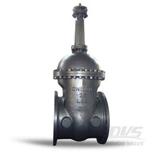 Flanged Gate Valve DN1000 PN25 LCB Replaceable Seat