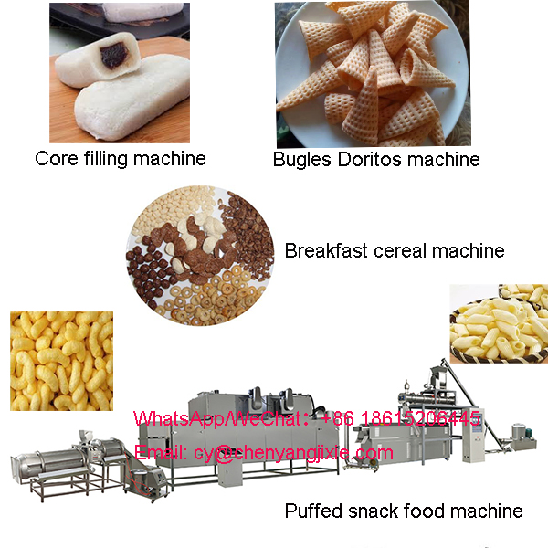 Puffed snack food machinery services