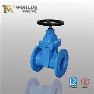 BS5163 No Rising Shaft Double Flanged Gate Valve