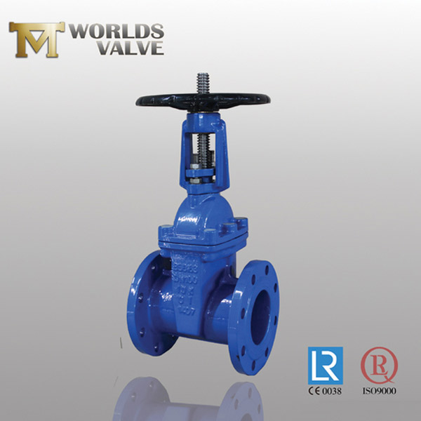 acs rubber seated gate valve