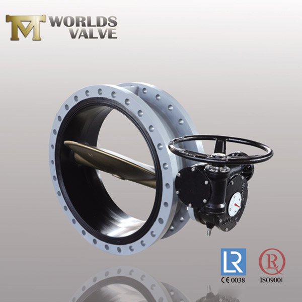 luged butterfly valve