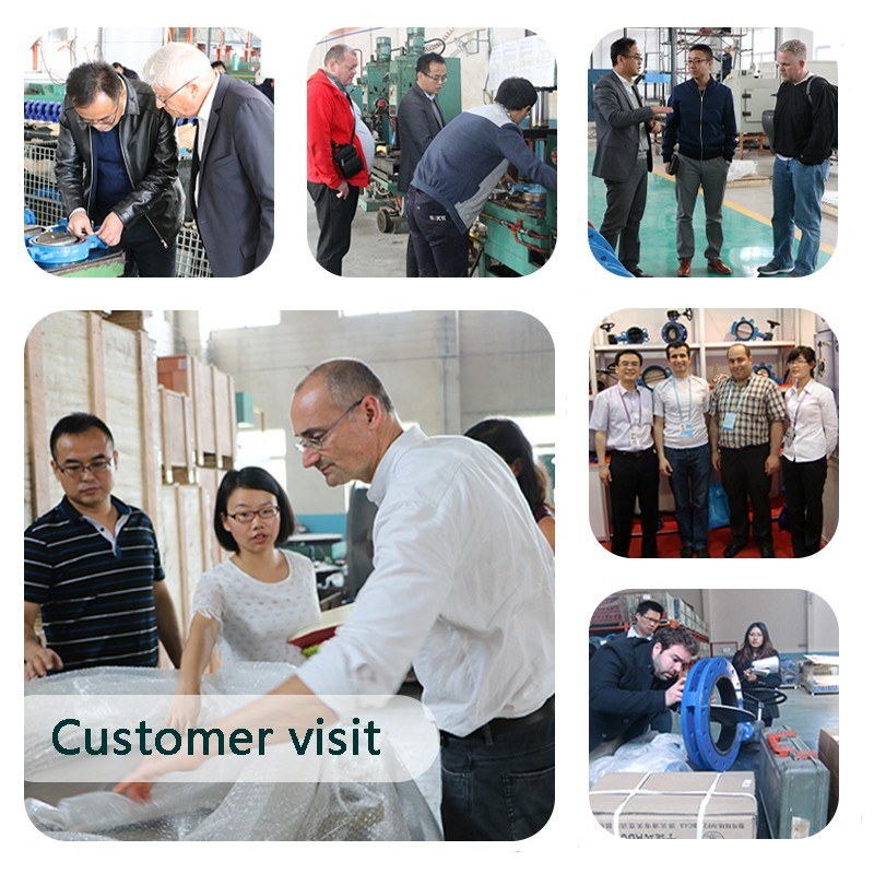 visita al cliente