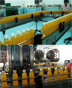 Southeast Asia customer's juice complete production line machine