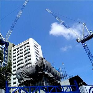 Luffing Jib 12Ton Tower Crane