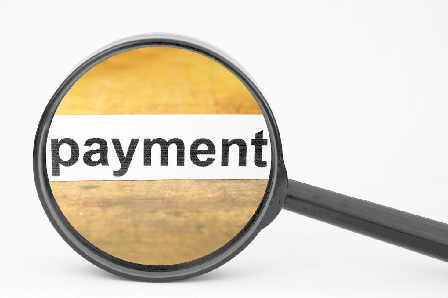 Payment Terms and Delivery Date