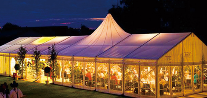 Cheap Curve And Pagoda Mixed Tent Price