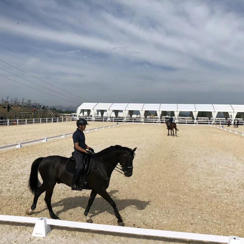 Tenda Equestre Eventos Tenda Tenda Tenda Tenda Estábulo