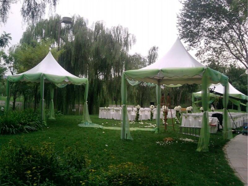 Carpa pagoda y carpa carpa carpa poligonal para carpa boda