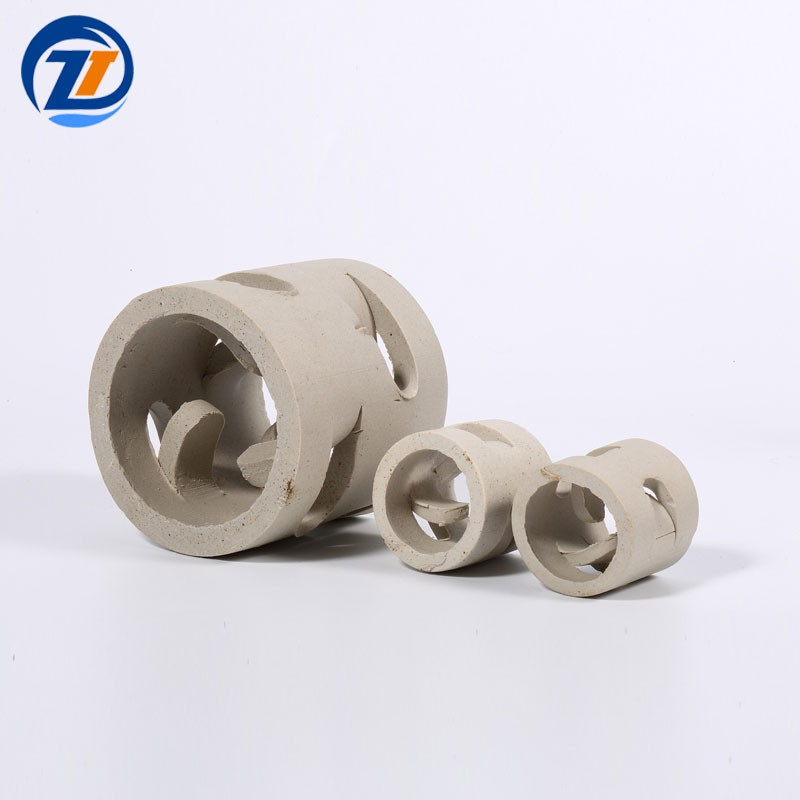 Chemical Random Tower Packing 25mm Ceramic Pall Ring