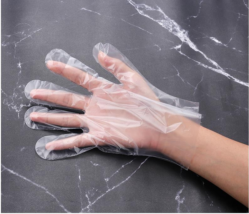 Multi-Purpose Disposable Gloves