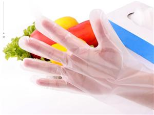 Transparent Disposable CPE Gloves