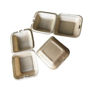 Biodegradable PLA Foam Take Away Food Packaging Lunch Box