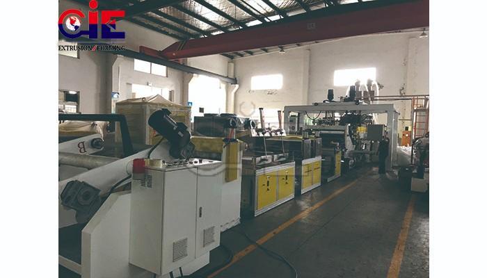 Precision Low Energy Consumption PLA PET Sheets Extrusion Line